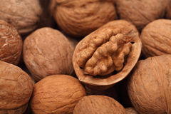 Close up view on walnuts Stock Images