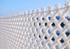 Close-up view of a wire fence with frost with ice crystals under a blue sky with a blurred background Royalty Free Stock Photos