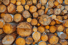 Close up view on woods pile Stock Photos