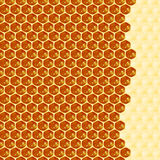 Close up view of the working bees on honey cells Royalty Free Stock Image