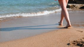 Close up view of young female legs on sandy shore. Close up view of female beautiful legs on sea. Close up of female legs walks on stock video