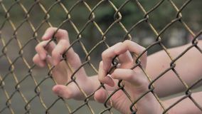 Close-up view of young man`s hands shaking metal mesh at fenced area. Helpless man shaking a metal fence trying to. 4K slow motion shot of young man`s hands stock video