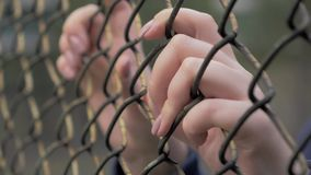 Close-up view of young woman`s hands grabing metal mesh at fenced area. 4K slow motion shot of young woman`s hands shaking metal mesh at fenced area stock footage
