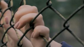Close-up view of young woman`s hands shaking metal mesh at fenced area. Helpless woman shaking a metal fence trying to. 4K slow motion shot of young woman`s stock video