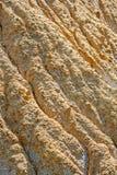 Close up viewon the sand Stock Photos