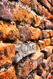 Close-up vintage brickwall Stock Images