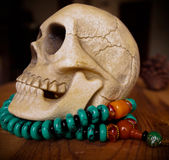 Close up of vintage Human skull model. On beads stock photography