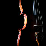 Close up violin Stock Photography