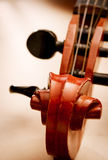 Close Up of Violin Scroll and Pegbox Stock Photos