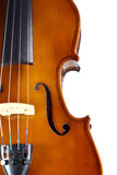 Close-up violin. On white background Stock Photography