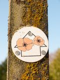 Close up of walking sign post arrow with red poppies. Essex; england; uk royalty free stock images