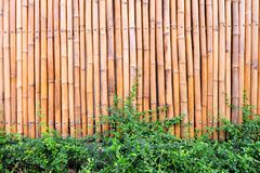 Wall made of vintage bamboo fence royalty free stock photography