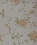 Close-up wallpaper texture Stock Images