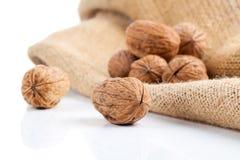 Close up of walnut Stock Photo