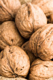 Close Up Walnuts Stock Images