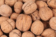 Close up of walnuts. Macro. Whole background Royalty Free Stock Photos