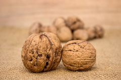 Close up of walnuts Stock Image