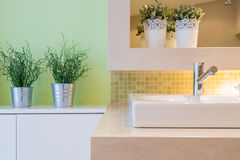 Close-up of washbasin Stock Photography