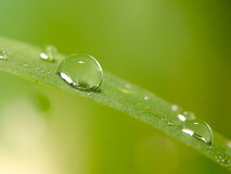 Close up water drop with nice green BG color Stock Photo