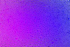 Close up of a water drops. On a purple and blue gradient background, covered with drops of water -condensation Stock Photography