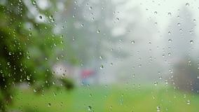 Close up of water drops on glass. Rain drops flow down the surface of the glass against the background of juicy greens stock footage