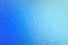Close up of a water drops. On a white  and blue gradient background, covered with drops of water -condensation Royalty Free Stock Photo