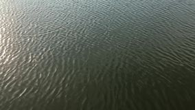 Water surface. Close up water lake surface stock video footage