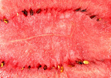 Close-up of water melon Stock Photos