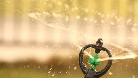 Close up water sprinkler spray watering, warm tone.