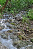 Streaming Water  Royalty Free Stock Photography