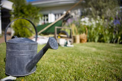 Close up of watering can on grass in backyard Stock Photos