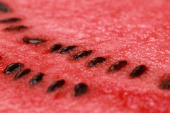 Close-up of a watermelon Stock Photos