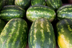 Close up of watermelon at street farmers market Royalty Free Stock Photo