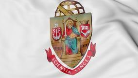 Close-up of waving flag with Universidade de Sao Paulo emblem 3D rendering Royalty Free Stock Photo