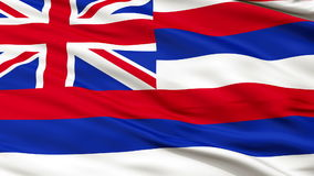 Close Up Waving National Flag of Hawaii stock video