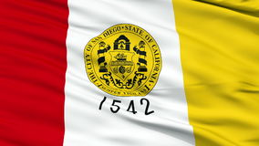 Close Up Waving National Flag of San Diego City stock video