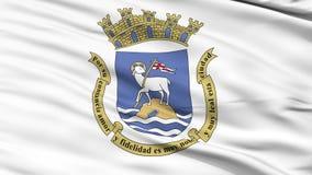 Close Up Waving National Flag of San Juan City. San Juan City Flag Close Up Realistic Animation Seamless Loop - 10 Seconds Long stock footage