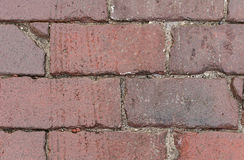 Close up of weathred red brick paved road Royalty Free Stock Photography