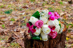 Close up of wedding bouquet Royalty Free Stock Photos
