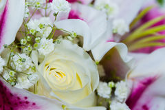 Close up wedding bouquet Stock Image