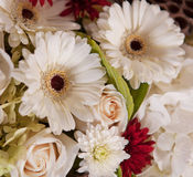 Close-up of wedding bouquet Stock Photography