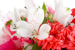 Close-up Wedding Bouquet Isolated Stock Photos