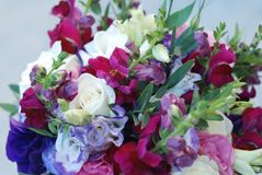Close Up of Wedding or Bridal Bouquet. Bunch of Purple and Pink Mix of Roses and Other Flowers. Flowers. Greeting Background. Close Up of Wedding or Bridal Stock Image
