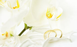 Close up on wedding rings and white orchid. Close up on wedding bouquet and rings Royalty Free Stock Photo