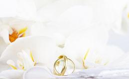 Close up on wedding rings and white orchid. Close up on wedding bouquet and rings Stock Photos