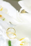 Close up on wedding rings and white orchid Royalty Free Stock Photo