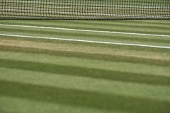 Close up of well manicured grass tennis court with net in the background at Wimbledon, London UK. Close up of well manicured grass tennis court with net in the royalty free stock images