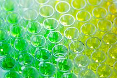 96 well plates on lab table with Green and yellow liquid samples stock image