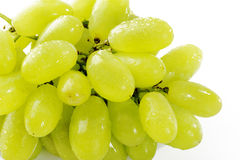 Close up wet green grape Royalty Free Stock Images