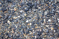 Close up of wet river stones Royalty Free Stock Images